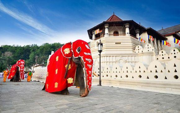 Grand Tour Sri Lanka 10 notti - Dambulla, Kandy, Nuwara Eliya, Yala, Colombo