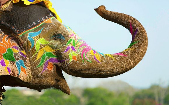 Affascinante tour tra Delhi, Jaipur e Agra in hotel 5*