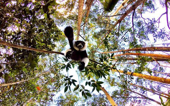 Emozionante tour tra le bellezze del Madagascar
