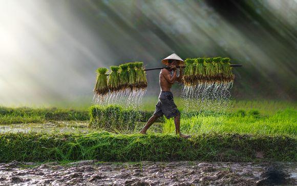 Alla scoperta di Cambogia e Vietnam