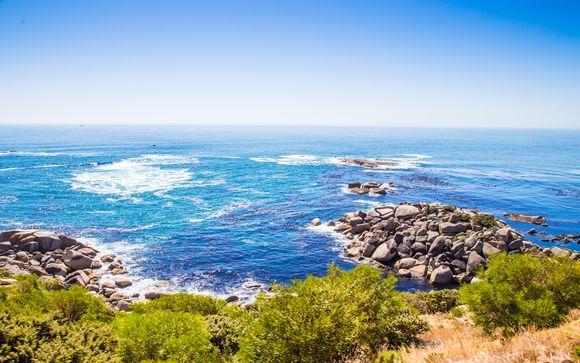 solo orientale Cape dating