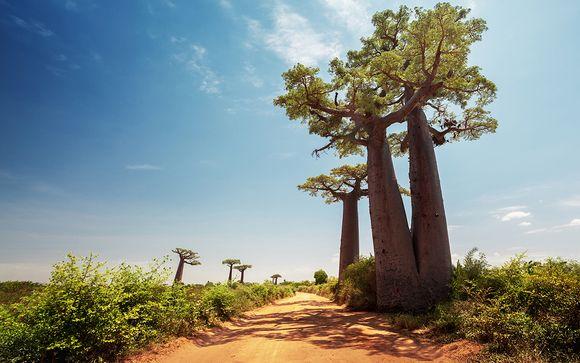 Tour e soggiorno mare nel sud del Madagascar