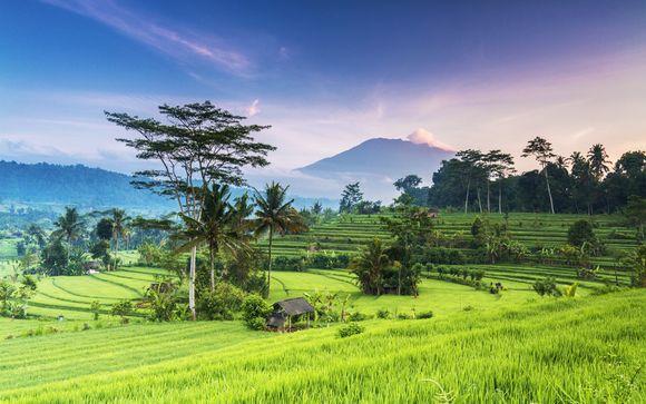 Alla scoperta di Ubud, Nusa Lembongan e Jimbaran