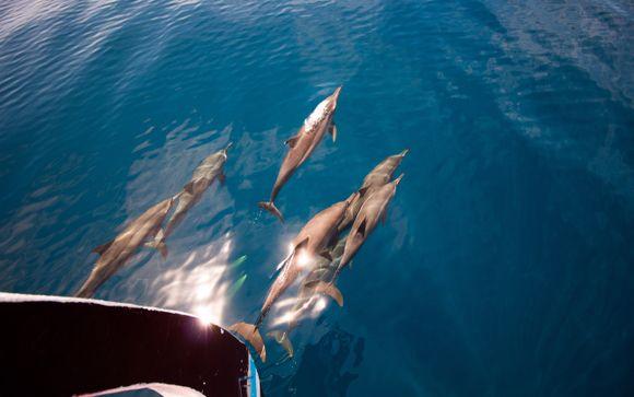 Inbegrepen excursie Malediven