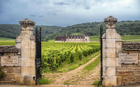 Destination...Burgundy