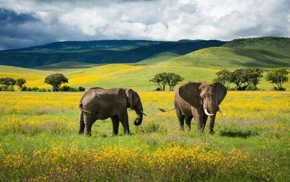 Your 5-Night All of Tanzania Safari Itinerary