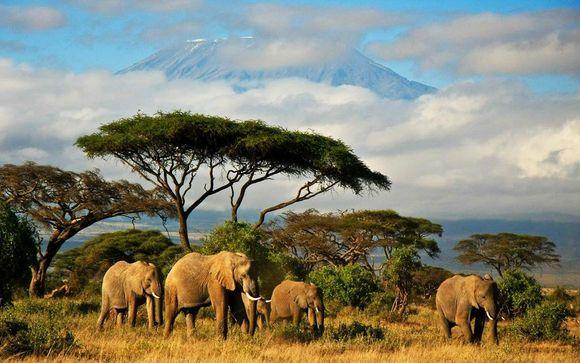 Simba Safari and Azao Resort & Spa 4*