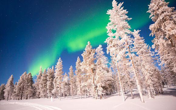 Polar Experiences in Loma Vietnonen