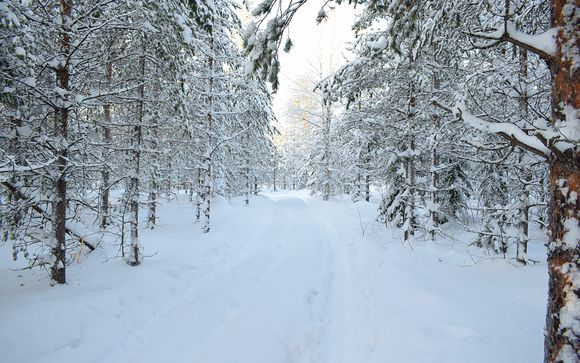 Your 7-night Itinerary with Optional Luleå Extension