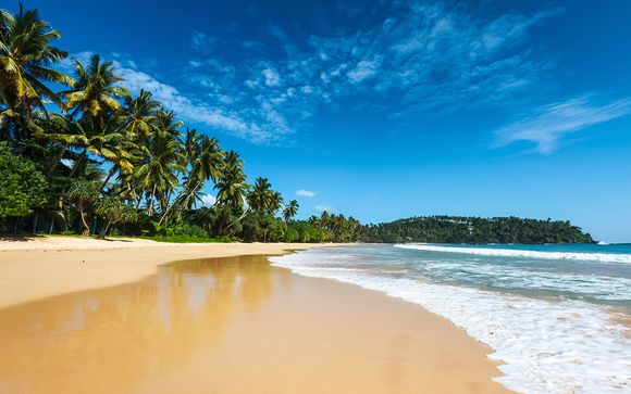 4 Night Tour and Blissful Beach Stay