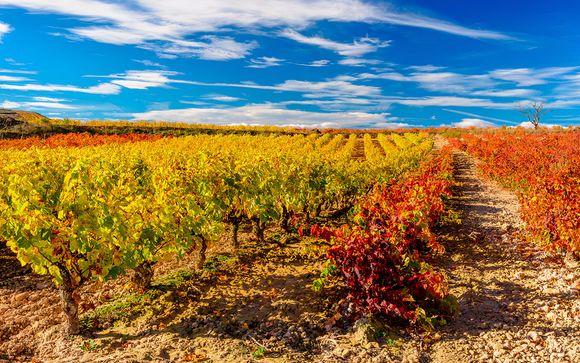 Briñas, en La Rioja, te espera