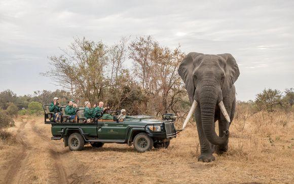 Ihre Safari im Überblick