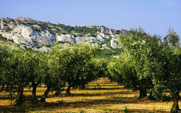 Rendez-vous...en Provence