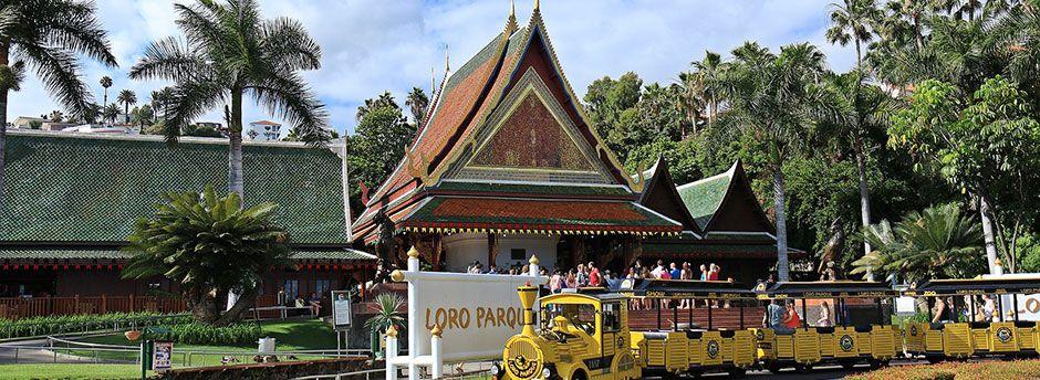 Loro Parque Tenerife - entradas y hoteles