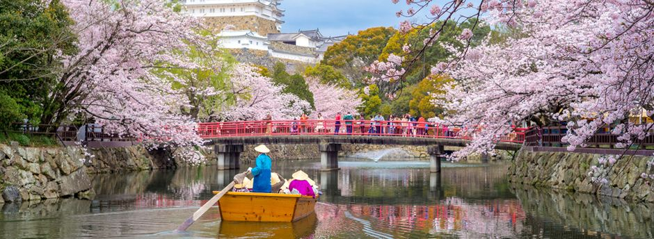 Guide futé pour bien voyager au Japon